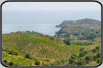 Royalty Free Roussillon Wine Region Stock Photos